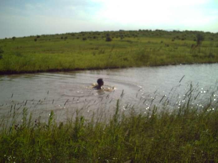 Свой пруд на гектаре